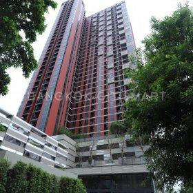 The Base Garden Rama 9